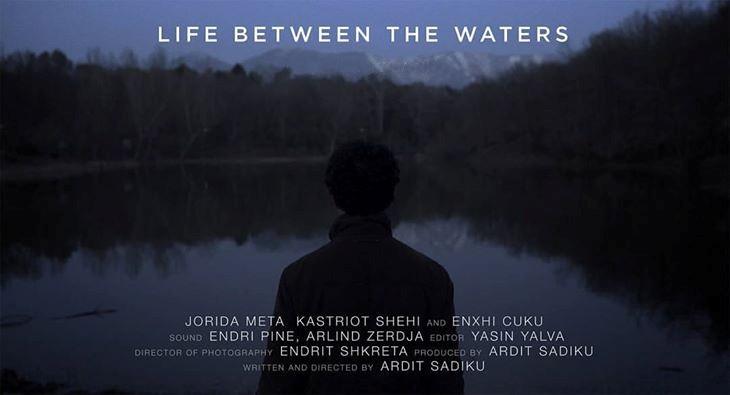 Kastriot  Shehi  Life between the waters
